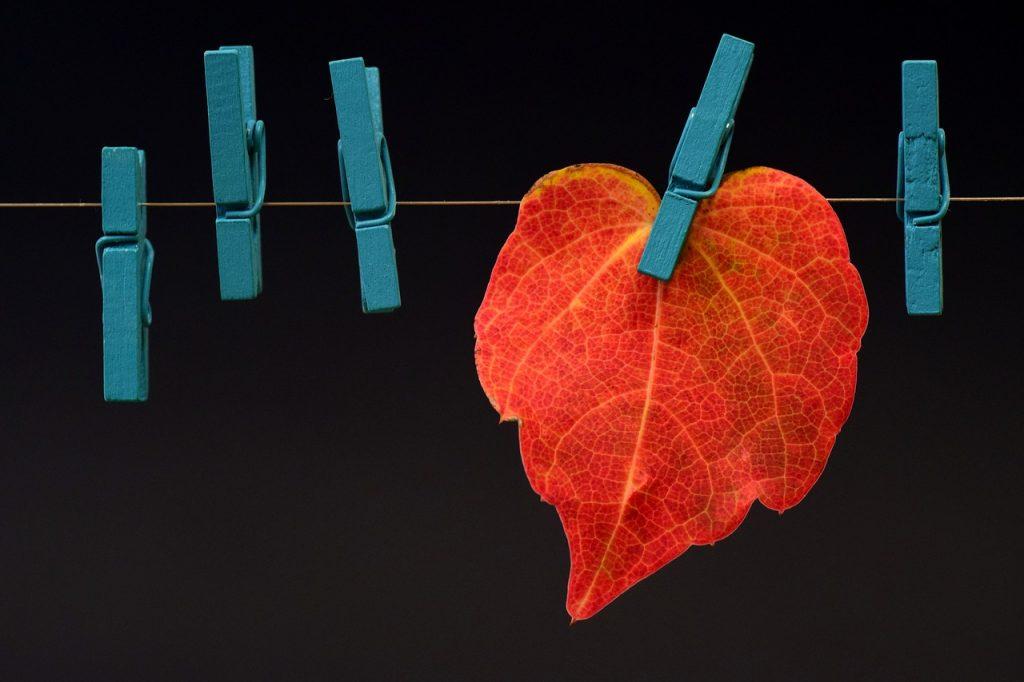 Powieszone liście na klamerkach